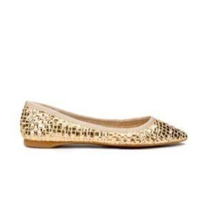ZARA ~ gold woven weave point toe ballet flat
